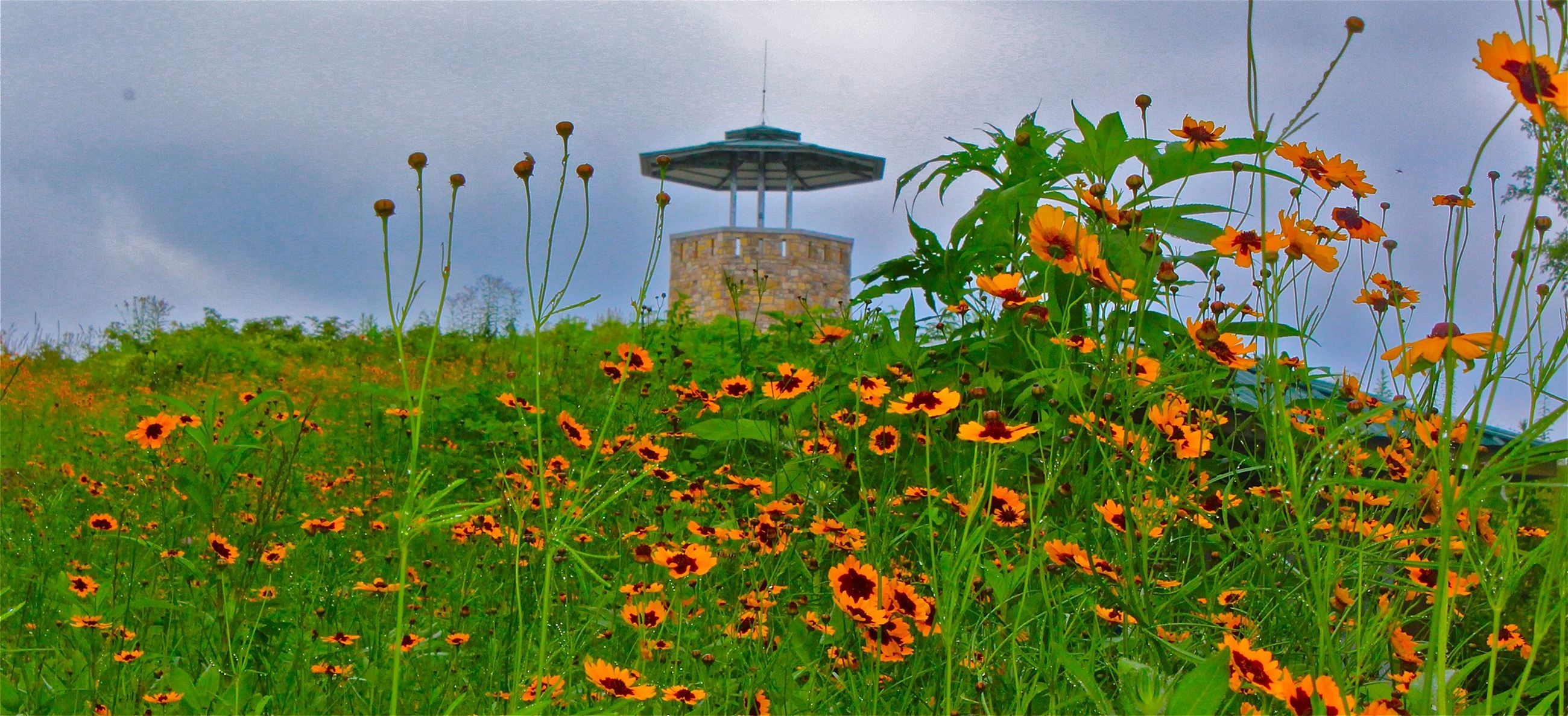 Photo of High Knob Observation Tower