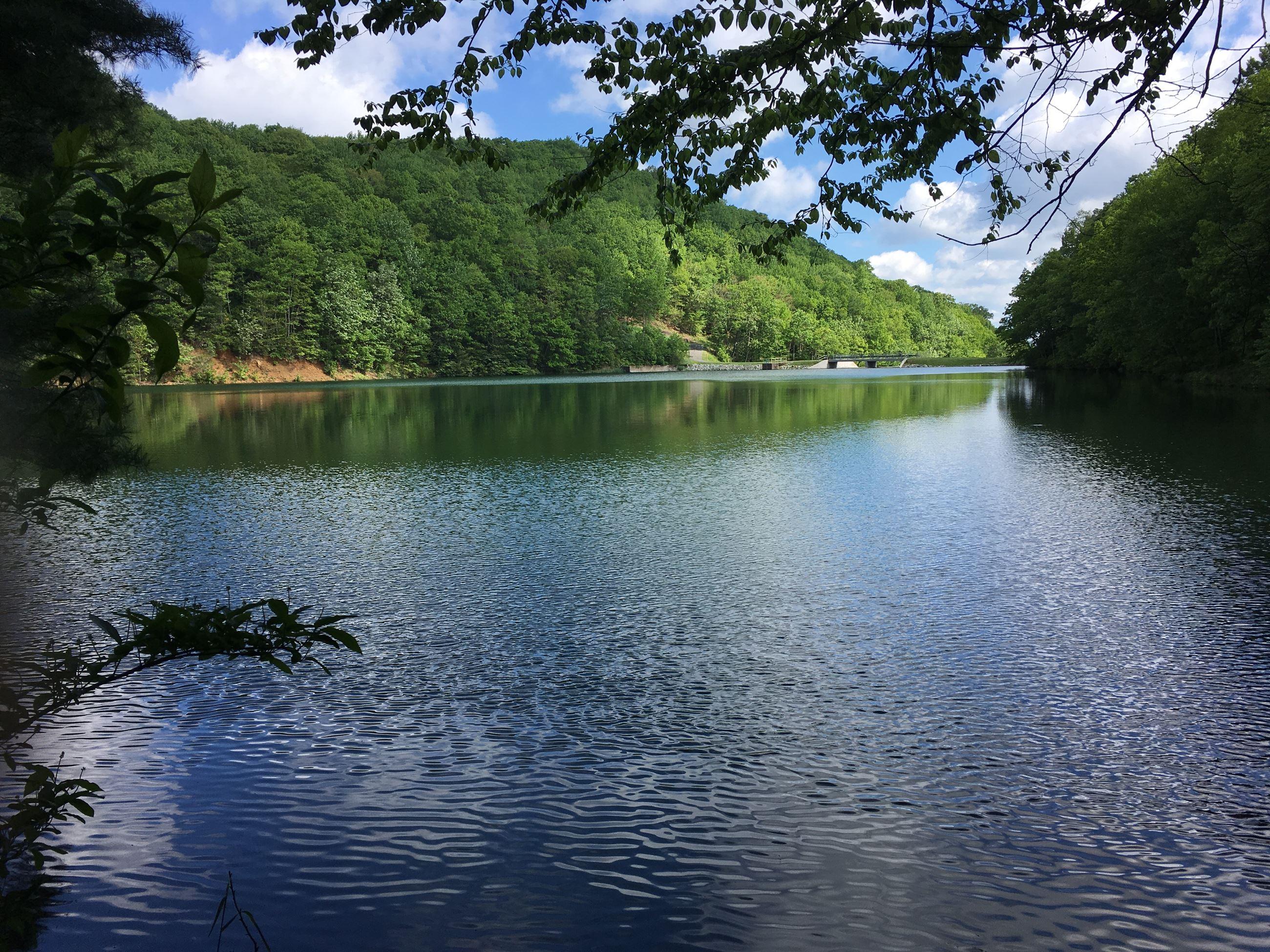 Fish | Norton, VA - Official Website