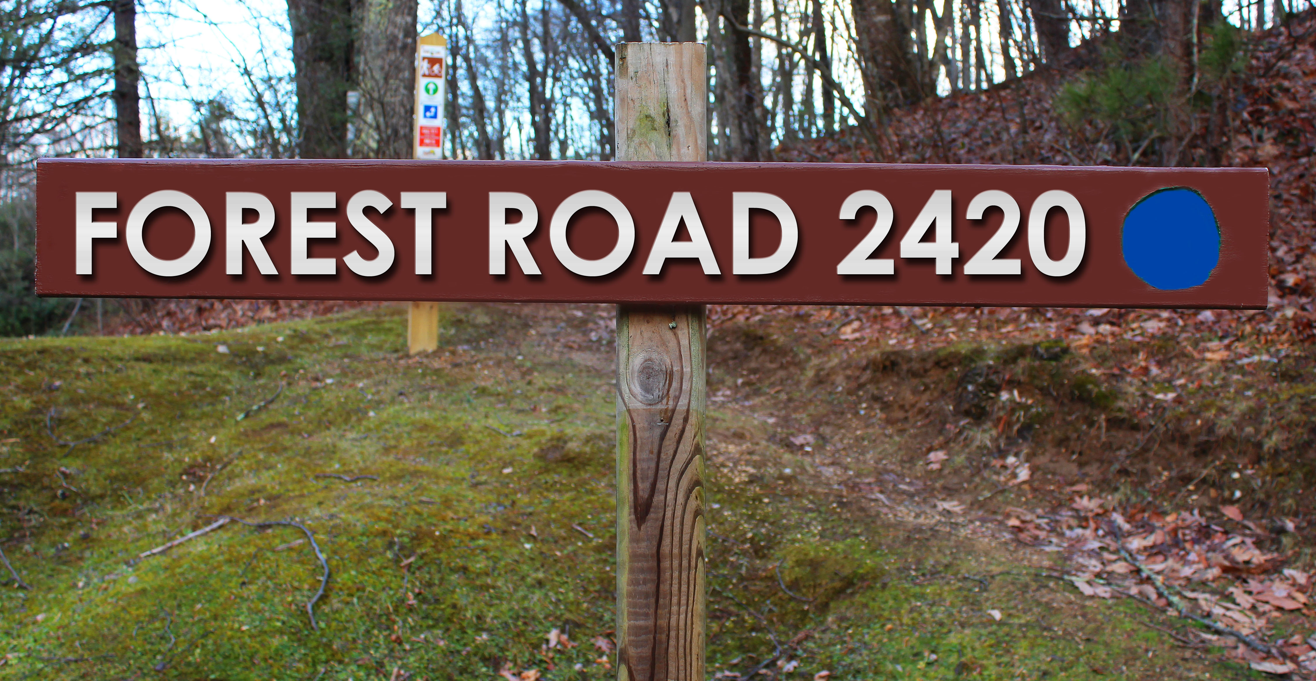 Picture of Forest Road 2420 trail sign