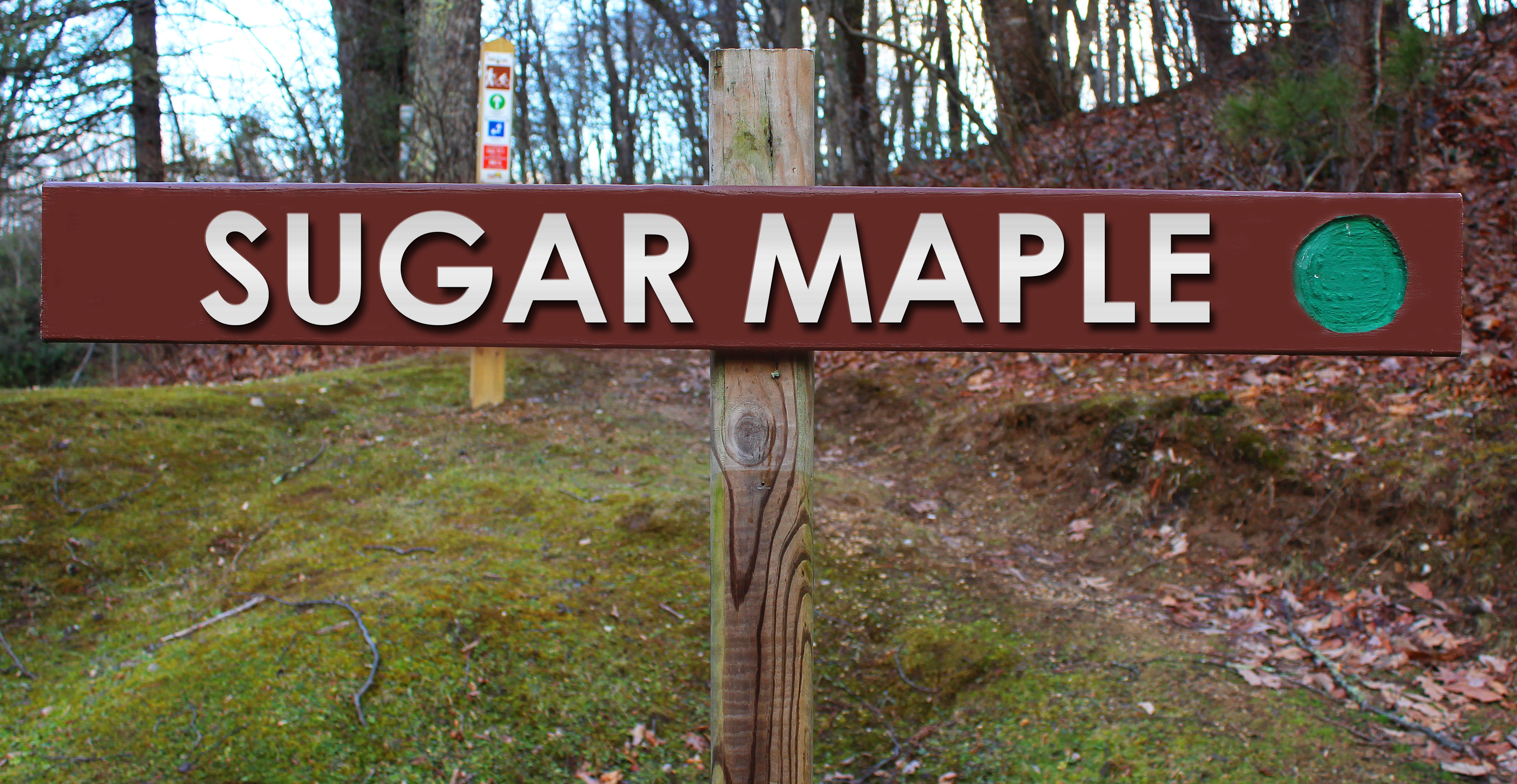 Picture of Sugar Maple trail sign